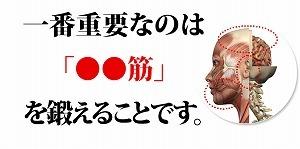 英語マッスルイングリッシュ夏目03.jpg